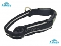 Ashley Housewares Small LED Dog Safety Collar 20 - 30cm DC151*OUT OF STOCK*