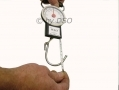 Luggage Scale with Tape Measure LS200 *Out of Stock*